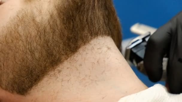 professional haircut and shave beard in barbershop