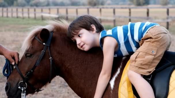 malý chlapec jízdy pony v letním parku