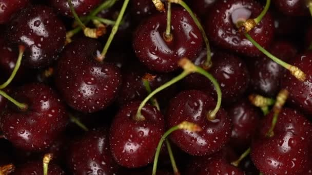 Fresh, ripe, juicy cherries background, close up berry, rotation with zoom out. Gastronomy concept, organic food.
