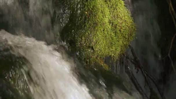 Vodopád s horskou řekou v Černé Hoře.