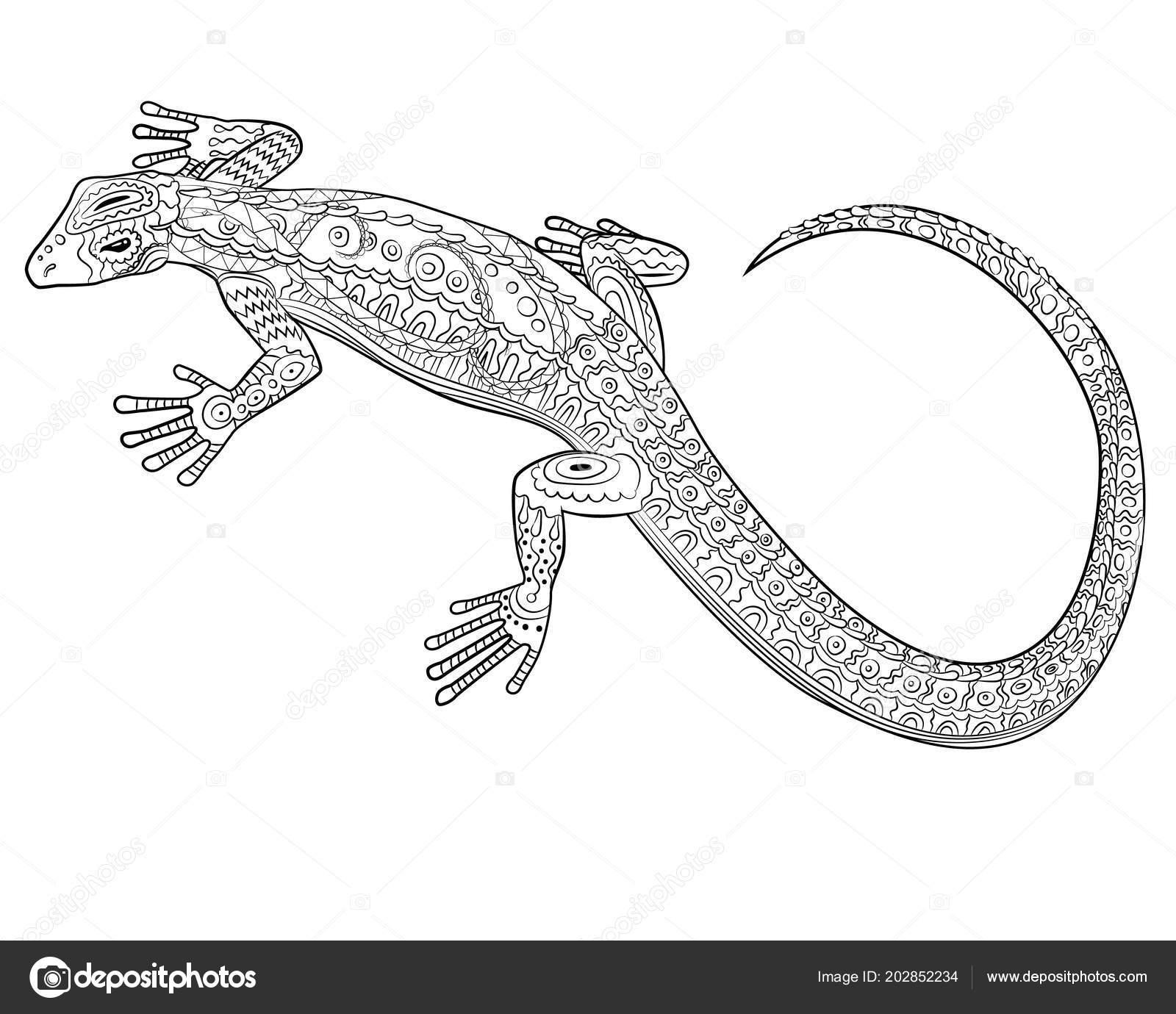 malvorlage reptil  coloring and malvorlagan
