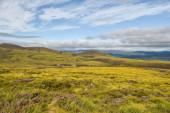 Farbenfrohe schottische Highlands bei den Cairngorms
