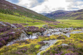 Wanderweg im Cairngorms Nationalpark. Angus, Schottland, Großbritannien. Schottland.