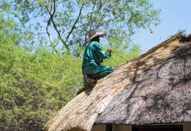 GWETA, BOTSWANA-NOVEMBER 16, 2018: roofer repairs the thatched roof of a house, botswana, africa