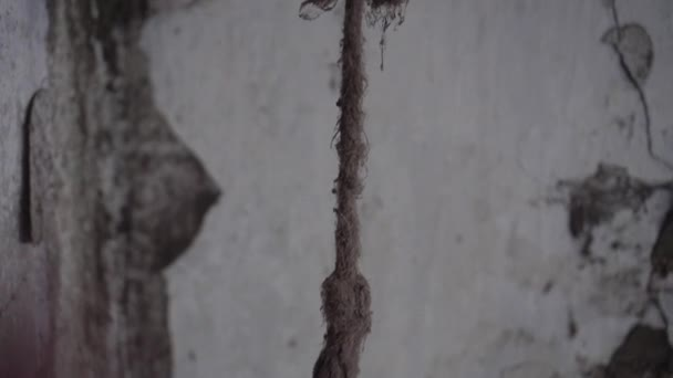 A dirty rope hangs from the ceiling in an abandoned building.