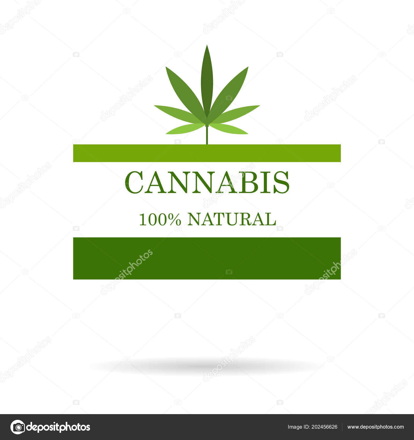c5107ce87398 Φύλλο μαριχουάνα. Ιατρική κάνναβη. Λάδι κάνναβης. Φυσικό κάνναβης. Εικόνα  προϊόντος ετικέτα και