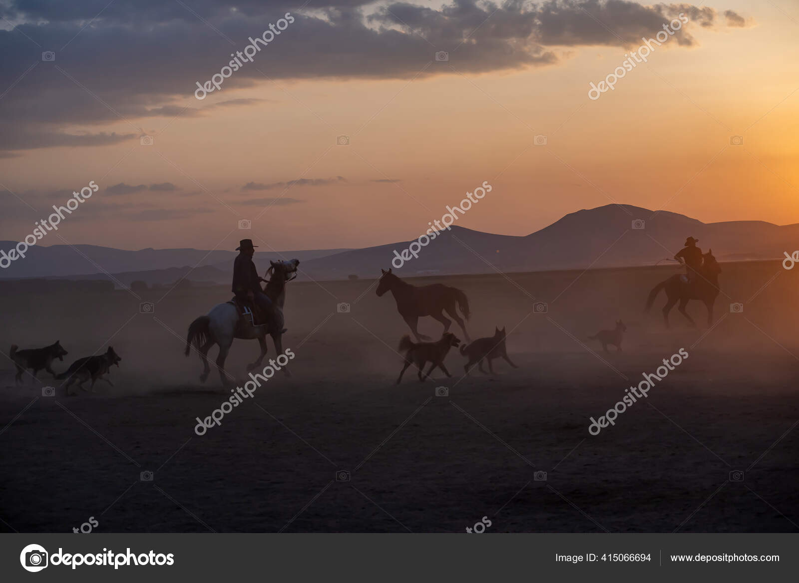 Wild Horses Run Foggy Sunset Wild Horses Running Dust Hormetci Stock Photo C Attractionart 415066694