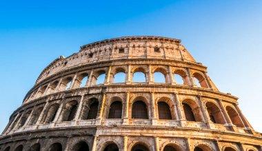 The Colosseum in Rome in Lazio in Italy stock vector