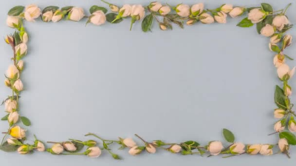 Small white roses and leaves moving in loop-able stop motion to a rectangular frame with pastel blue background and copy space