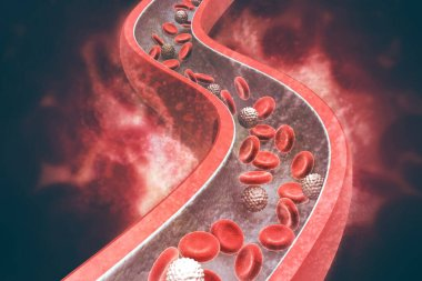 Blood cells in an artery. 3d illustration