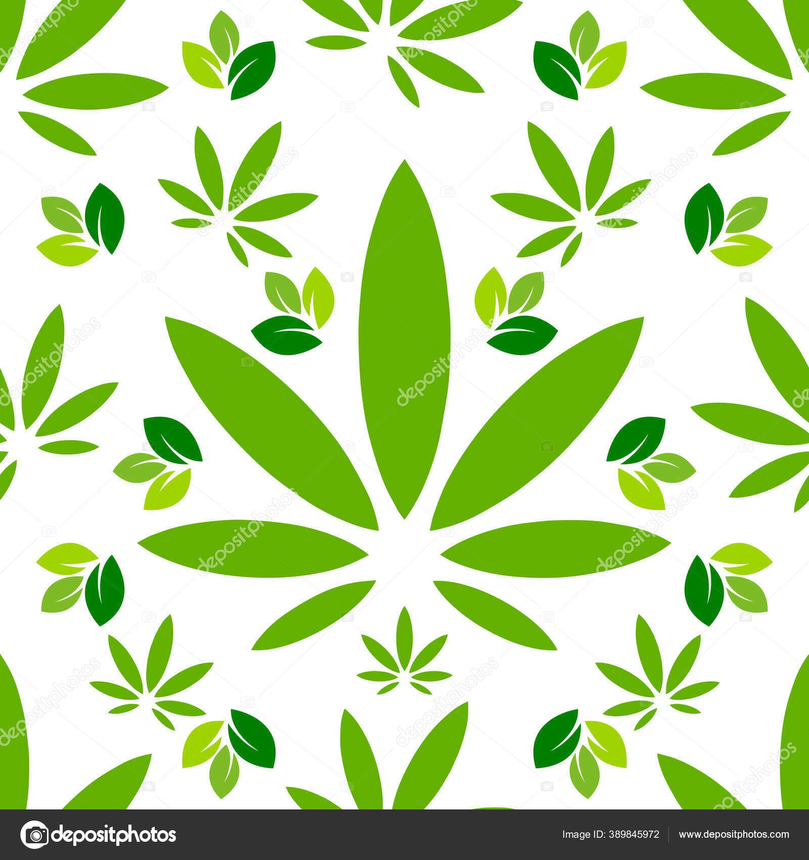depositphotos 389845972 stock illustration cannabis marijuana leaf leaves design