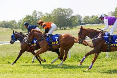 Side view of colorful jockeys riding arabian race horses, audien