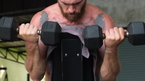 Young muscular tattooed strong muscle bearded european man doing hard exercise with dumbbells for shoulders arms back on cross fit training