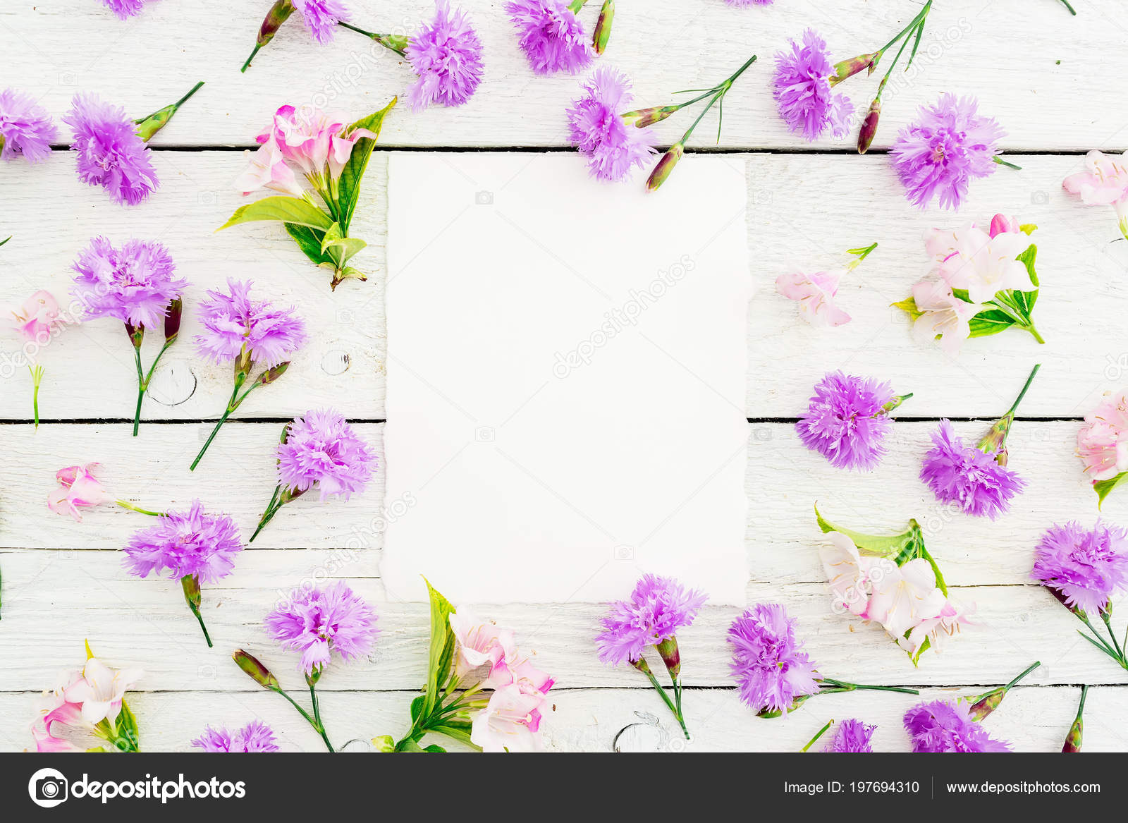 Top View Purple Flowers Paper Isolated White Wooden Background