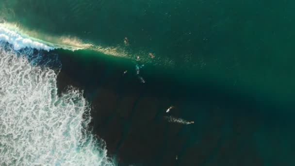 Aerial view of surfers and barrel wave in ocean. Top view. Surfing and waves