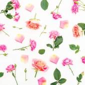 Vzor s květy růžových růží a lístků na bílém pozadí. Plochá ležel, horní pohled