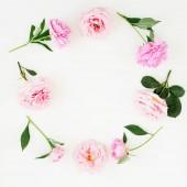 Květinový rámeček růžové růže, pivoňky a zelené listy na bílém pozadí. Pohled na ploché ležel, top. Květinové pozadí