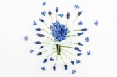 Floral pattern with blue flowers and pink hyacinth bouquet on white background. Flat lay, top view.