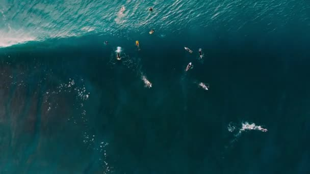 Aerial view of surfers and blue barrel wave in ocean. Top view. Surfing and waves