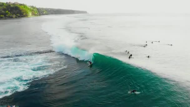 Aerial view of turquoise barrel wave in tropical ocean and surfers