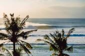 Velké oceánské vlny a kokosové palmy. vlny pro surfování