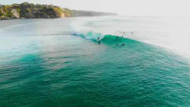 Surfers and ocean wave. Surfing and waves