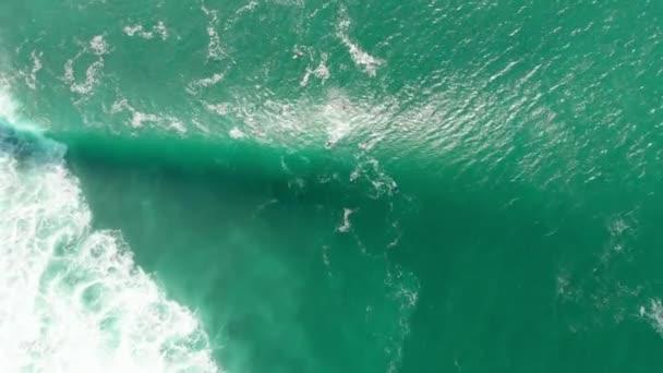 Letecký pohled s surfaři a valnou vlnou v oceánu. Pohled shora. Surfování a vlny
