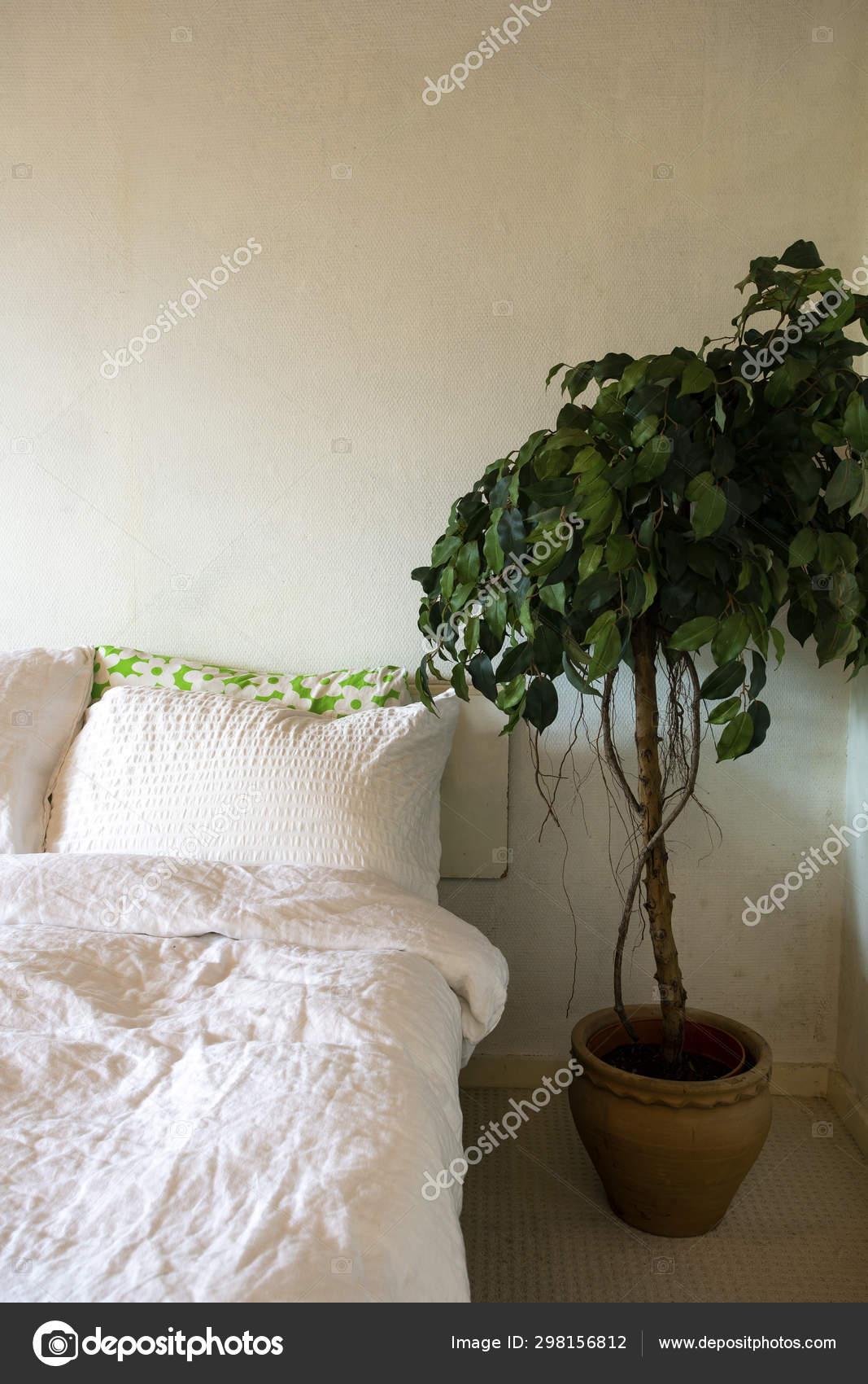 Schlafzimmer weiße Leinen und grünes Haus Pflanze, modernes ...