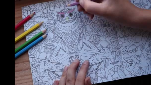 Barevné video ruky držící tužku a zbarvení dospělé omalovánky. close-up