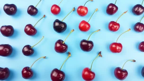 Cseresznye gyümölcs pasztell kék háttér.