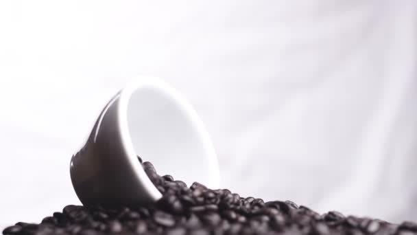 Black coffee beans in white cup rotating on white background. Close up footage.