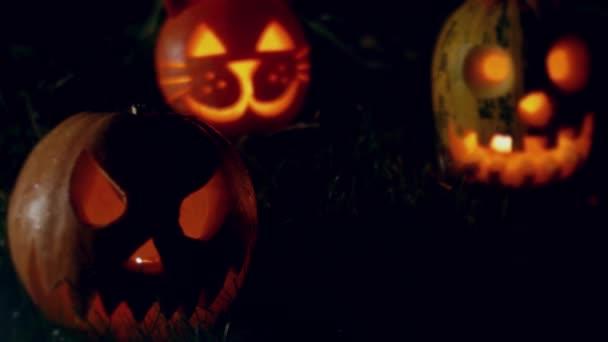 Strašidelný Halloween dýně na trávě v noci. Prázdniny jsou srandovní. 4k pozadí.
