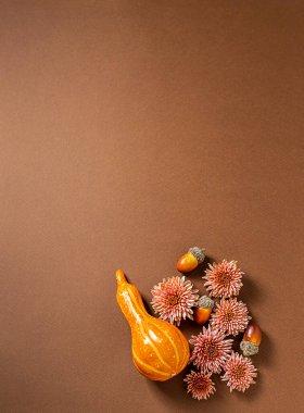 Autumn composition, flowers, decorative orange pumpkins, acorns, dried leaves on brown background. Halloween concept. Vertical orientation. Flat lay, copy space
