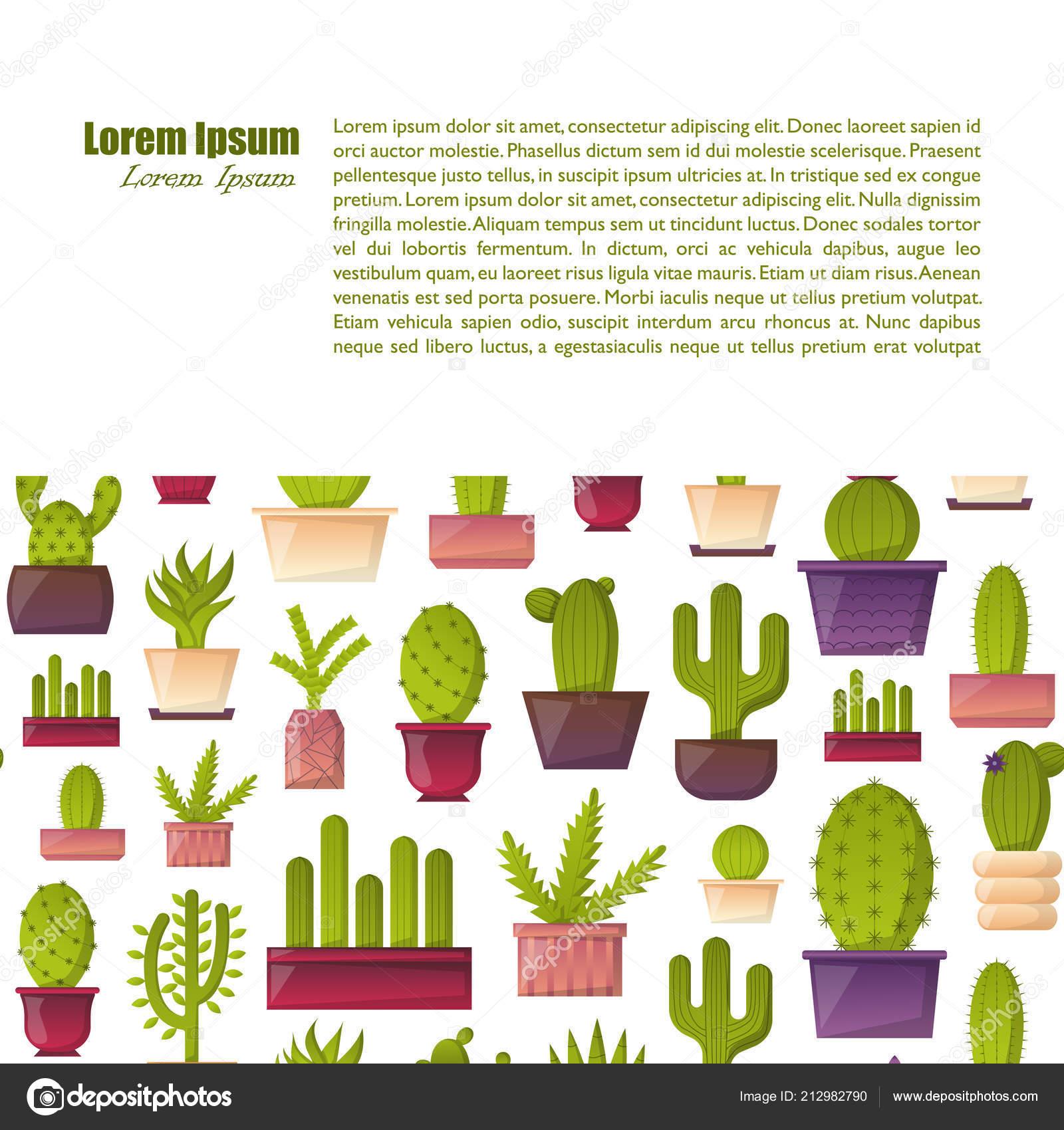 Illustration Vectorielle Avec Fond Cactus Dessin Animé