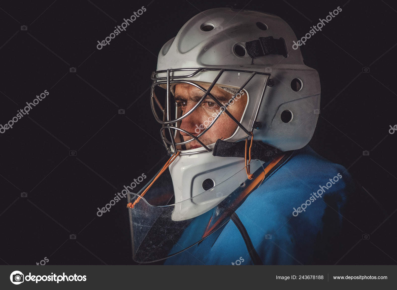 Hockey Goalie Mask Stock Photo C Alenalitvin 243678188