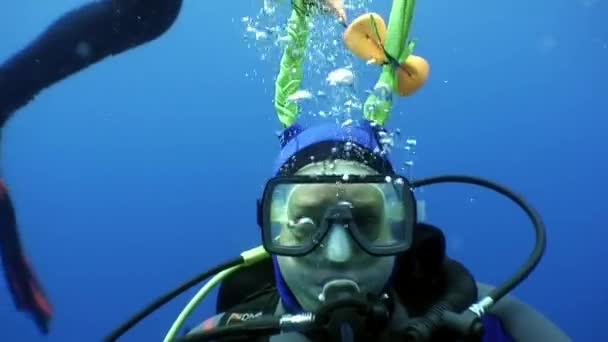 Diver in mask with pigtails looks at camera undwewater.