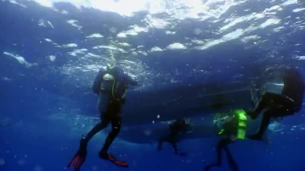 Group of diver swim under water and return to the boat.