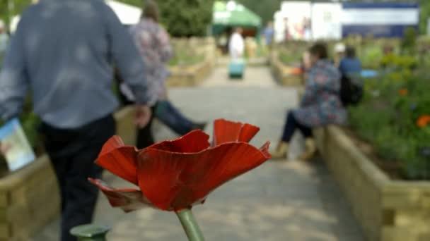 Incredibly beautiful iron poppy flowers