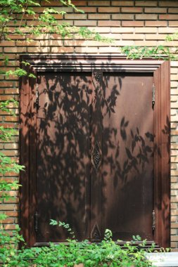 Tree shadows in the garden on antique thai style wooden window on brick wall. Vintage concept.