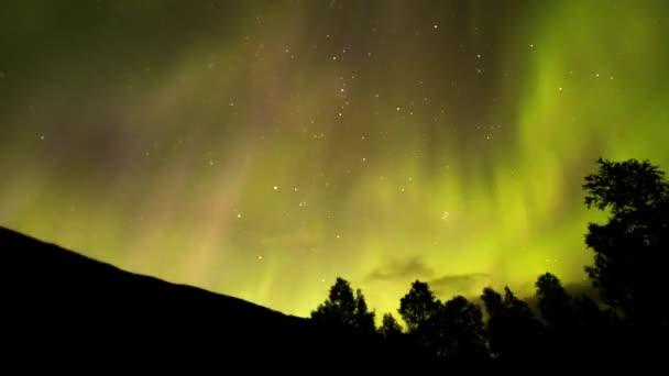 Gyönyörű északi fények sárga és rózsaszín tónusok