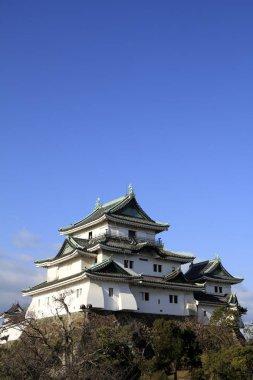 Wakayama castle in Wakayama city, Japan