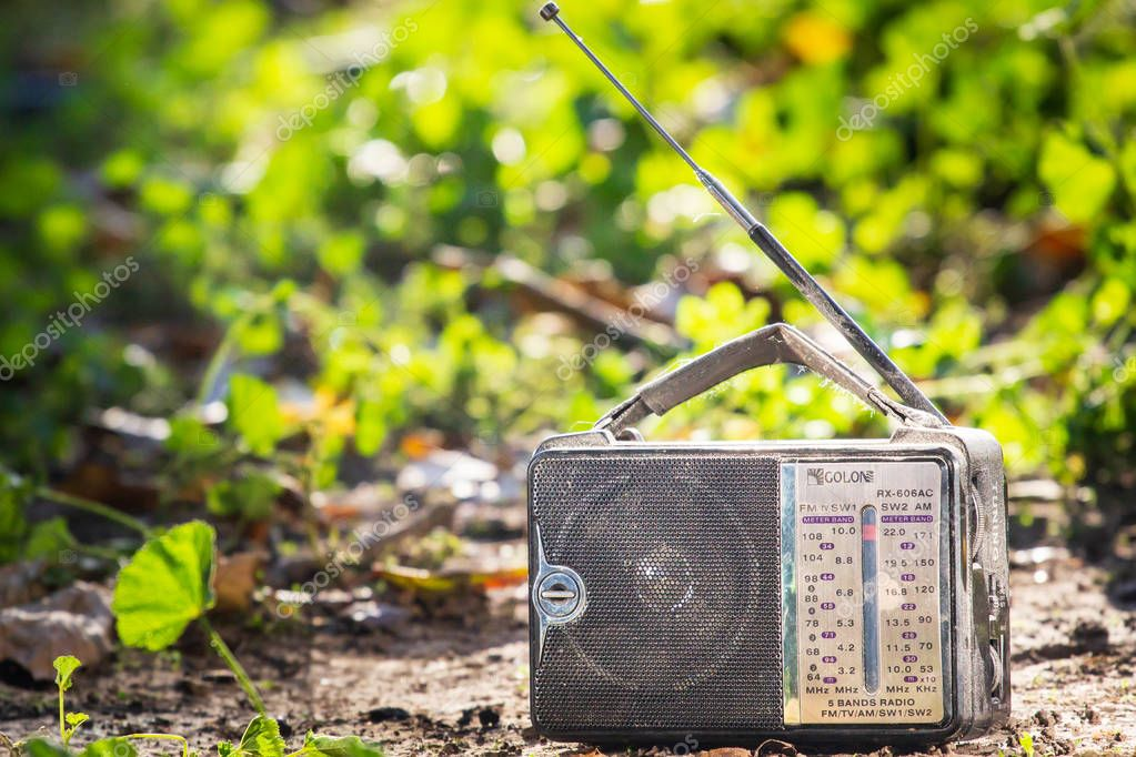 Old radio receiver in green grass.