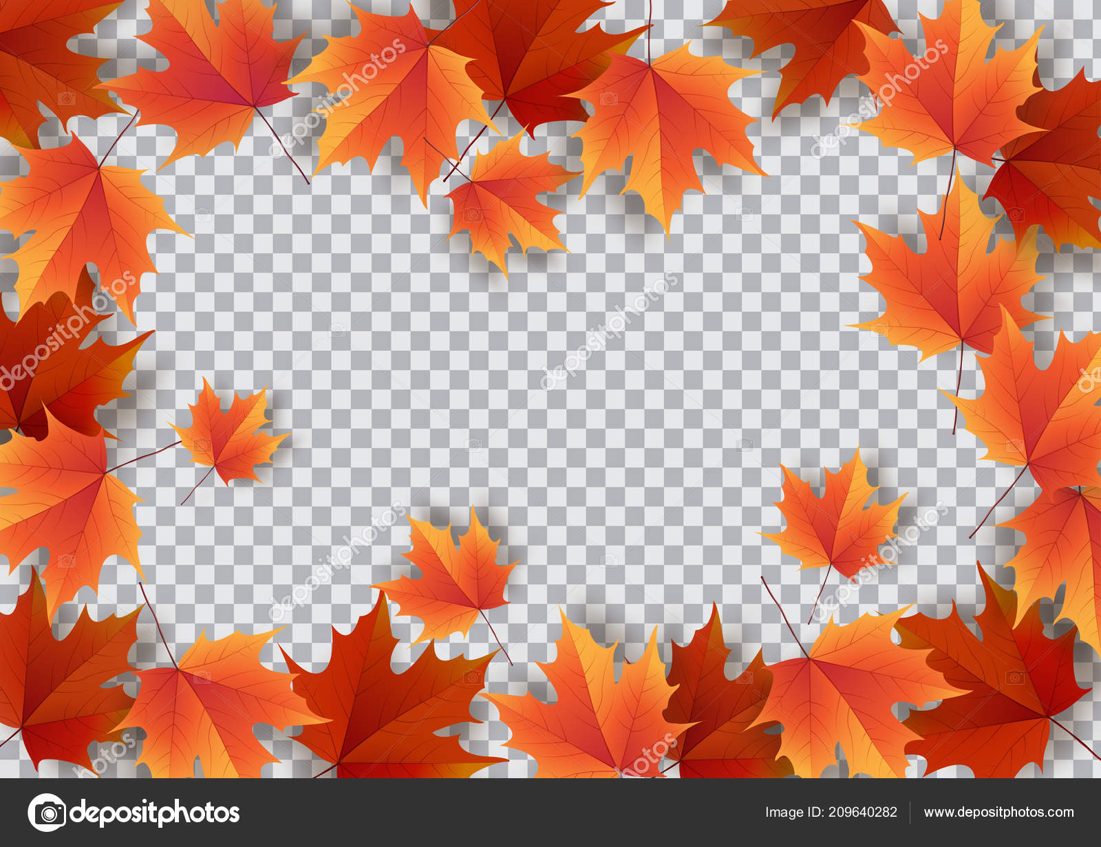 autumn leaves bright colourful autumn oak leaves template for