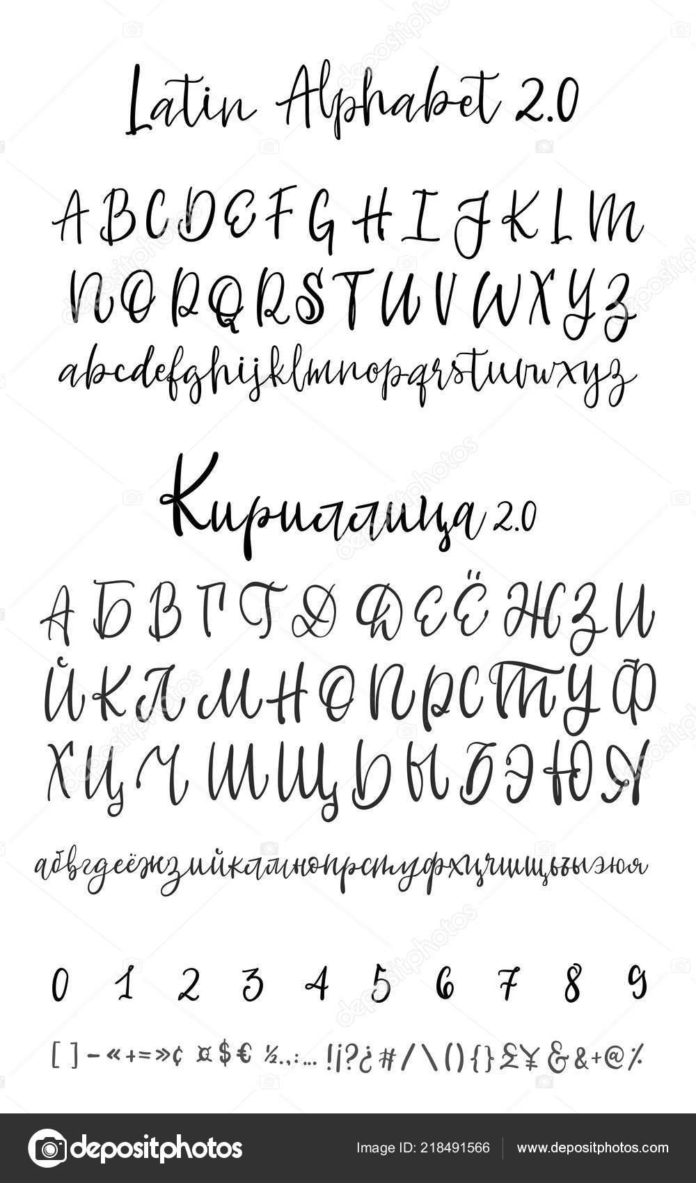 Vector Calligraphy Alphabet  Exclusive Letters  Decorative