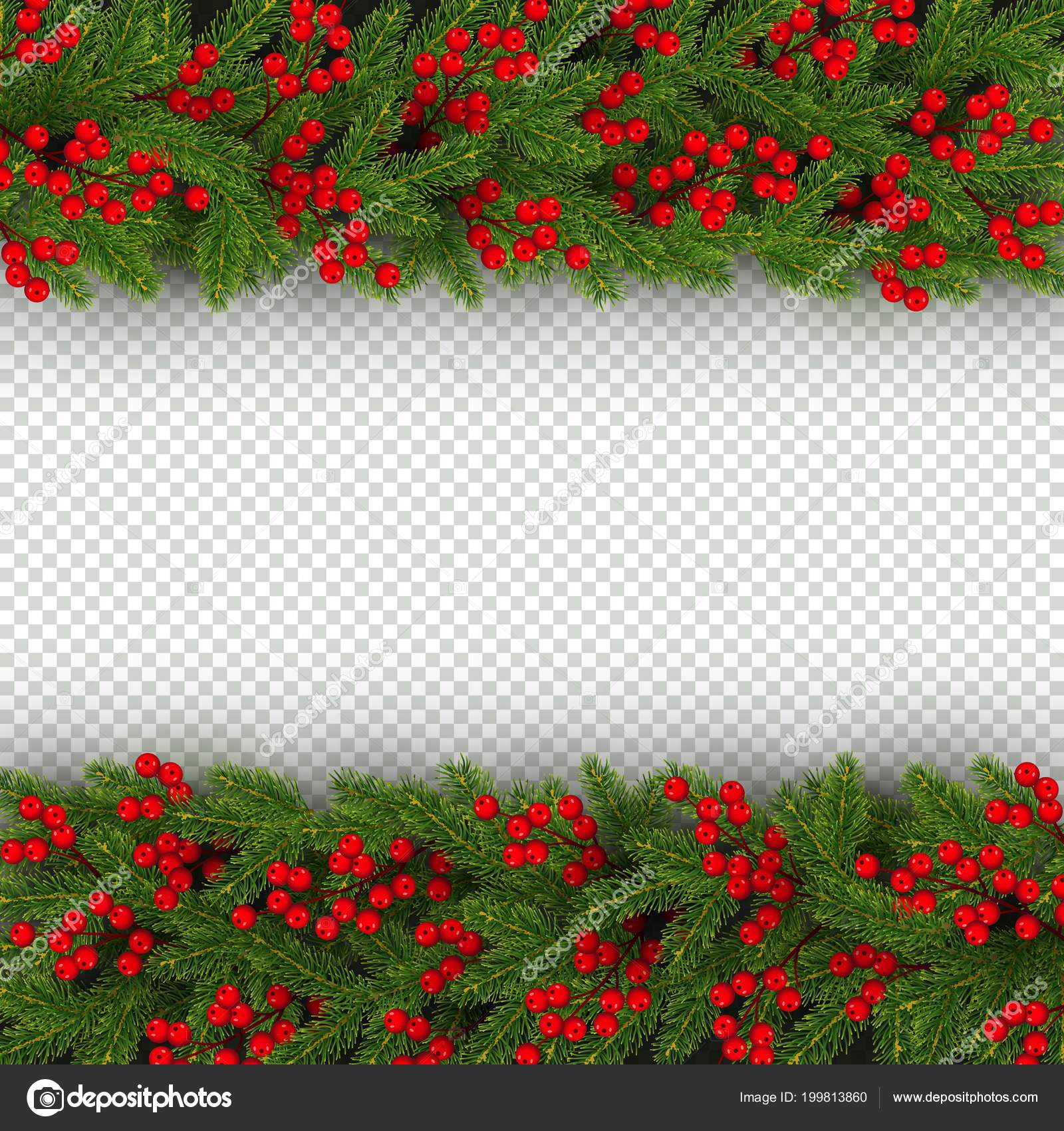 christmas and new year banner template with horizontal border of realistic branches of christmas tree and holly berries element for festive design isolated
