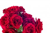 Fotografie Red rose flowers arrangement isolated on white