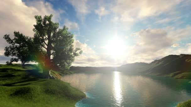 Gyönyörű fa egy napsütéses napon
