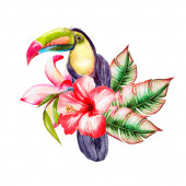 Watercolor tropical composition with hibiscus flowers and tukan bird, monstera leaves.
