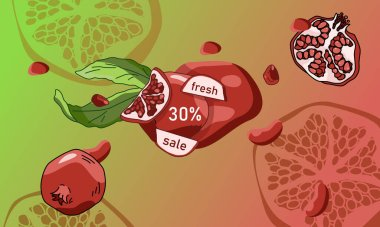 Pomegranate sale banner on gradient backdrop. Tropical fruit discount for vegan shop logo, promo card, healthy food shop. Internet store or website banner. Drawn style stock vector illustration icon