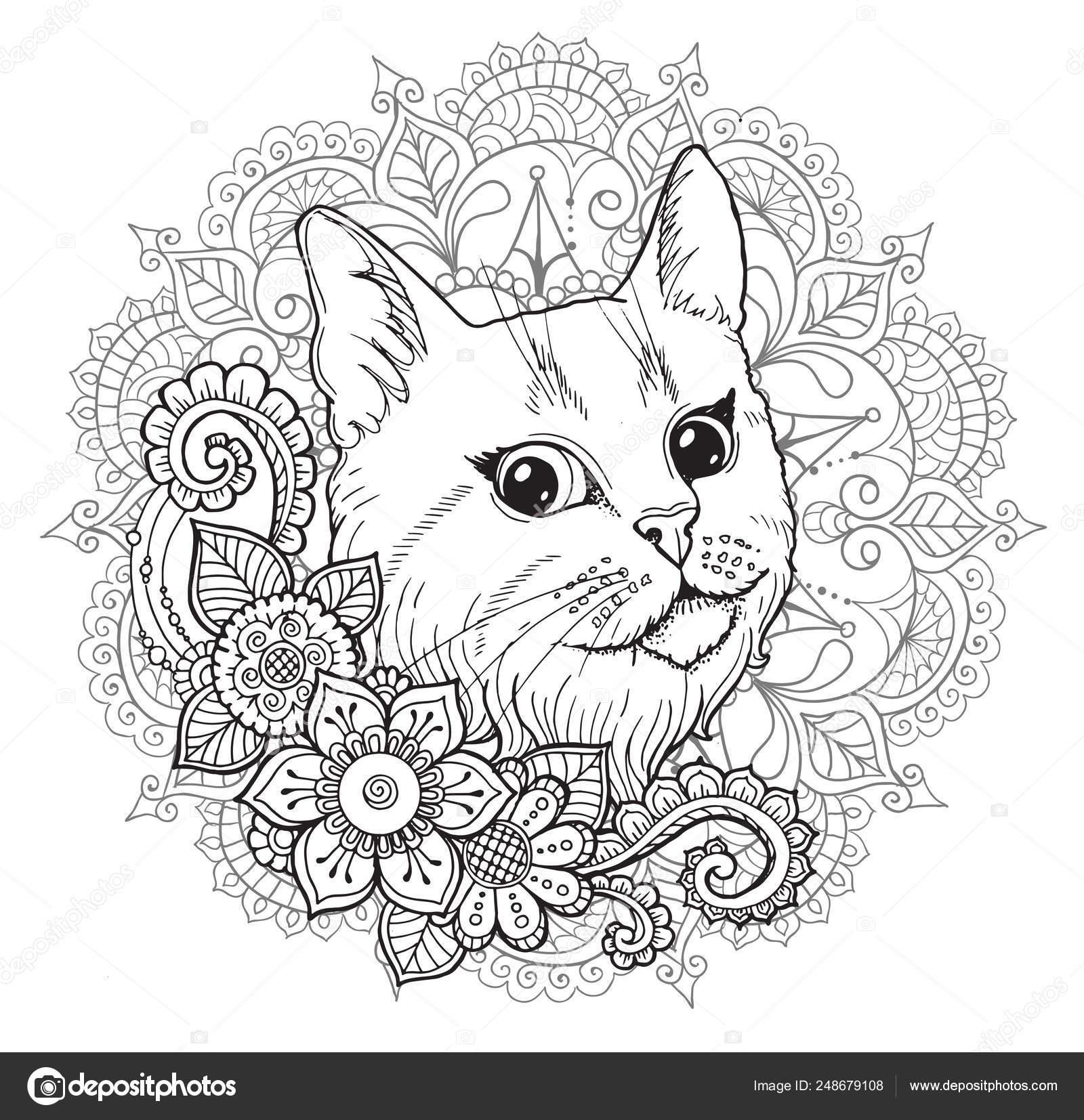 The Cat And The Mandala Coloring Book Stock Vector C Snowkat